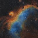 IC2177 Seagull Nebula In SHO,                                johnnywang