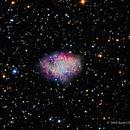 M1, The Crab Nebula,                                Scott