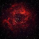 Rosette Nebula (Caldwell 49),                                Butti Bushlaibi