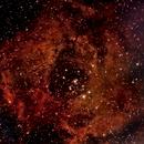 NGC 2244 Rosette Nebula,                                cajusor