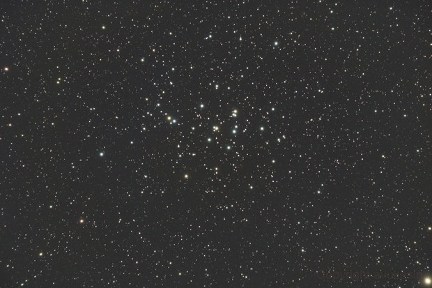 M44 - Beehive Cluster,                                Alex Vukasin