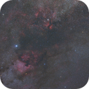 Cygnus with N A  and Veil Nebulas,                                Astromainer