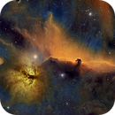Horsehead and Flame Nebula, Hubble Palette,                                Eric Coles (coles44)