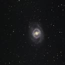 M95 - 31 March / 1 April 2017,                                Geof Lewis