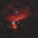 Horsehead Nebula - B33,                                Euripides