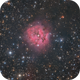 IC 5146 - Cocoon Nebula from light polluted skies,                                Victor Van Puyenb...