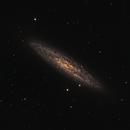 NGC253,                                Henry Kwok
