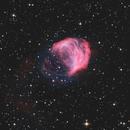 Medusa Nebula / Abell 21 / Sh2-274,                                Chris Sullivan