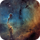 Elephant's Trunk nebula - Hubble Palette,                                Thomas Richter