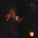IC 443 - Jellyfish Nebula,                                Dale Hollenbaugh