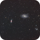 M81/M82 ASI,                                Thilo Frey