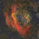 Clamshell Nebula Sh2-119 (SHO version),                                Carastro