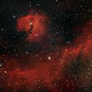 Seagull nebula dual narrowband,                                Janos Barabas