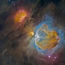 Orion Nebula HDR in Hubble Palette -- DSW,                                Miles Zhou