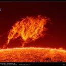 Big quiescent prominence - 02.04.2016,                                Łukasz Sujka