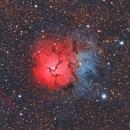 Nebulosa Trífida - M20,                                Guillermo Spiers