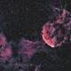 ICC 443  Jellyfish Nebula,                                Rhett Herring