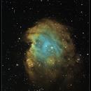 NGC 2174 The Monkey Head Nebula in Orion,                                rigel123