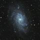 M33 - Triangulum Galaxy,                                Rhinottw