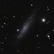 NGC1003,                                lowenthalm