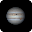 Jupiter, with the GRS, Io and Io's shadow in transit.,                                Niall MacNeill