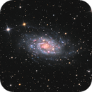 NGC2403 (Caldwell7) the little M33,                                Vincent F