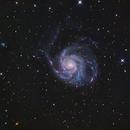 M101,                                  Atsushi Ono