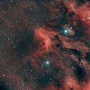 IC 5070 - Pelican Nebula,                                Brandon Eady