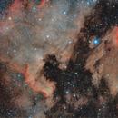 NGC 7000 and IC 5067/70 in Cygnus,                                Andrea Pistocchini - pisto92