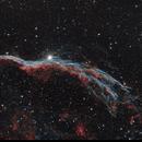 The Western Veil Nebula (NGC 6960),                                Marcel Nowaczyk