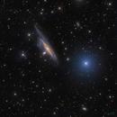 NGC1532,                                Philippe BERNHARD