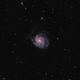M101 - Pinwheel Galaxy,                                wylam