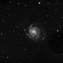 M101 colour,                                Steve Ibbotson