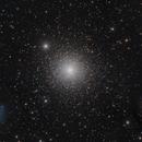 M15 The Pegasus Cluster,                                Michael Feigenbaum