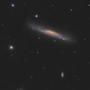 NGC 3079 - EdgeHD 11,                                Andrew Burwell