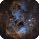 IC410 - The Tadpoles in SHO and PRGB stars,                                Uwe Deutermann