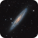 NGC 253 - Sculptor Galaxy,                                Wellerson Lopes