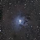 NGC7023 Iris Nebula,                                Kiyoshi Imai