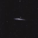 Whale Galaxy,                                  drivingcat