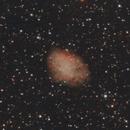 M1 - Crab Nebula (29 Dec 2019),                                Bernhard Suntinger