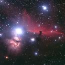 IC434 Horsehead,                                Roger Groom
