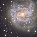 M83 Southern Pinwheel Galaxy,                                Richard Muhlack