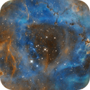 NGC 2237, SH 2-275, The Rosette in Ha(SHO),                                Madratter