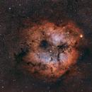 IC1396,                                Riccardo Crescimbeni