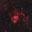 IC 1795 - Fish Head Nebula,                                Marco Failli