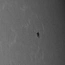 Sun showing AR 2501 - 25 Feb 2016,                                Geof Lewis