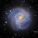 M83  Southern Pinwheel Galaxy,                                HoldGone