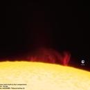 Sun prominence and Earth comparison,                                Massimiliano Veschini