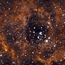 The Rosette Nebula,                                  Jirair Afarian
