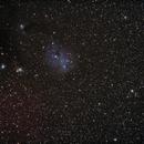 IC 2169,                                Nikolay Iliev